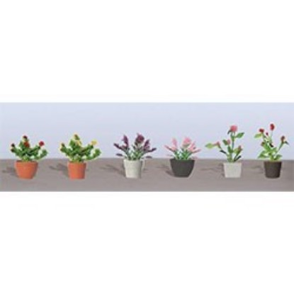 Picture of Assorted Potted Flowering Plants (6 pk) 1""