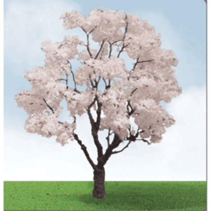 "Picture of Blossoming Cherry Trees -- 3 to 3-1/2"" ( pkg(2)"