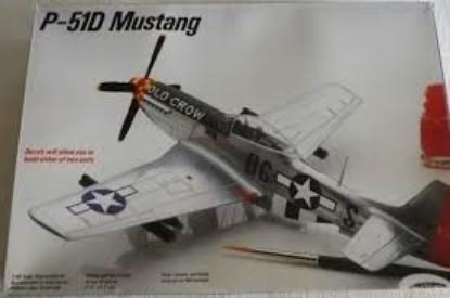 Picture of P-51D Mustang