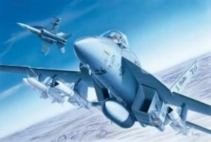 Picture of F/A-18E Super Hornet