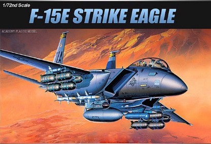 Picture of F-15E USAF fighter