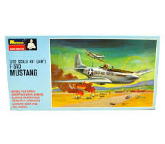 Picture of F-51D Mustang Airplane