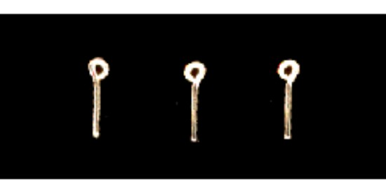 """Picture of Formed Wire Eye Bolt Lift Rings - Scale 3-1/2"""" 8.9cm pkg(12)"""